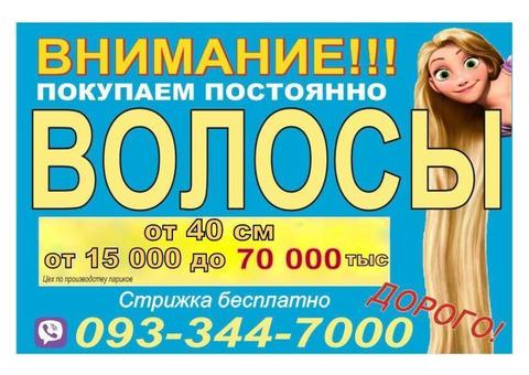Куплю Продать волосы Николаев ДОРОГО