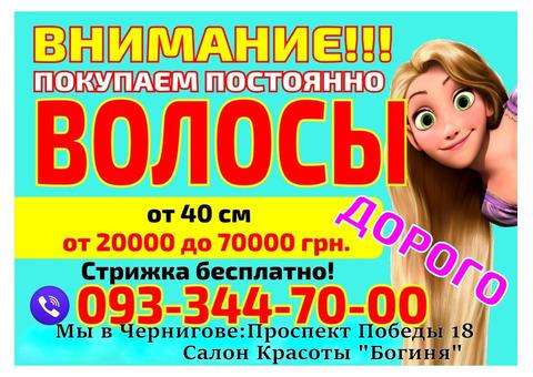 Продать волосы в Чернигове Без посредников