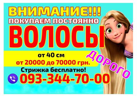 Куплю волосся дорого Львів Продати волосся у Львові